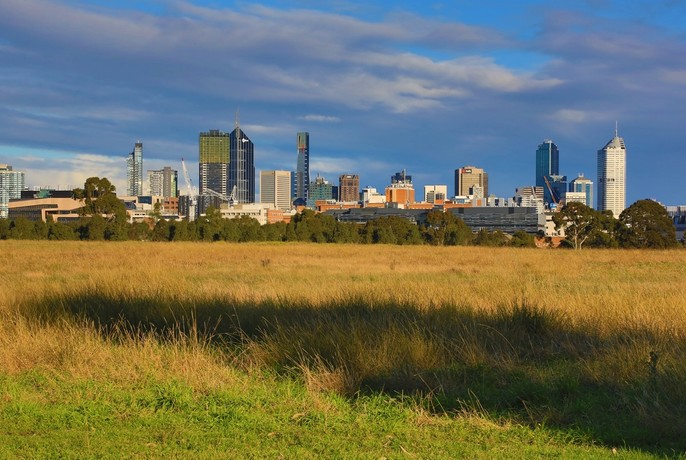 Grassy field and cityscape in the distance at Royal Park.
