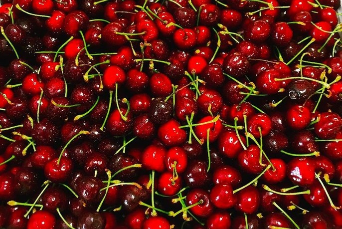 Dark crimson and bright red fresh cherries.