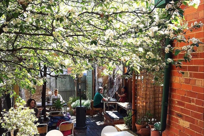 Café courtyard under blossoming tree