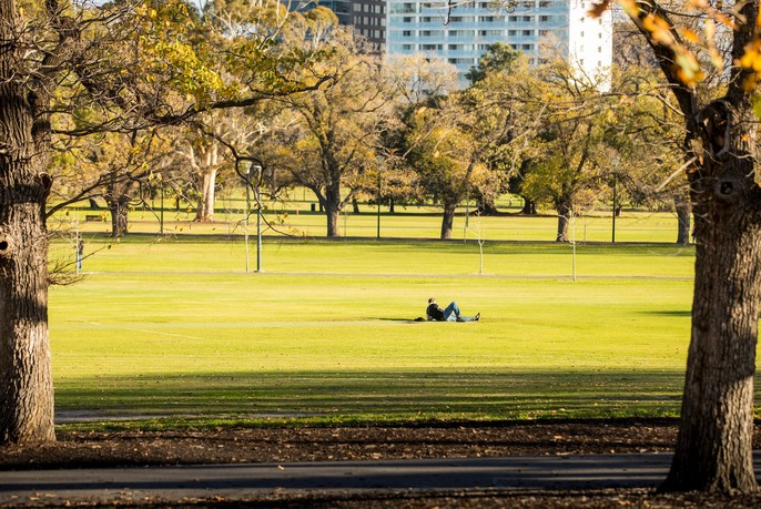 Person lying on grass in Fawkner Park, surrounded by trees.